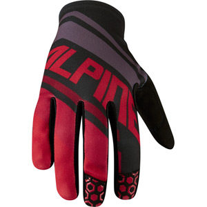 Alpine men's gloves