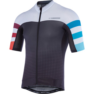 RoadRace Premio men's short sleeve jersey, stripes Ltd