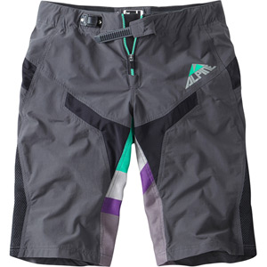 Alpine men's FR shorts
